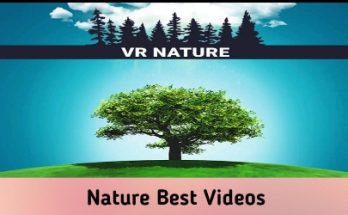 Nature Best Videos To See